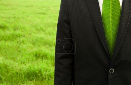 Foto de Businessman with green leaf tie on the grass field - Imagen libre de derechos
