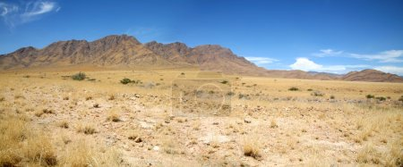 Wildnis in Namibia