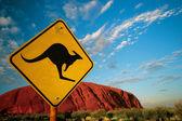 Känguru Ayers rock
