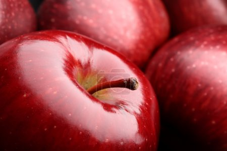 Photo for Close-up of a dark red apple between other apples - Royalty Free Image
