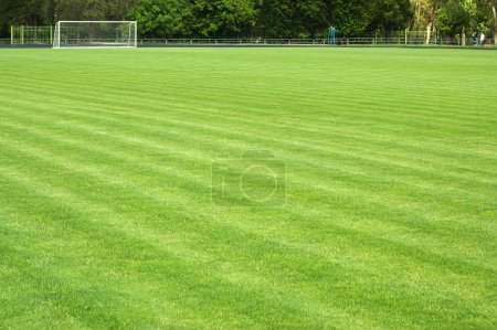 Green soccer field and goal at a distance