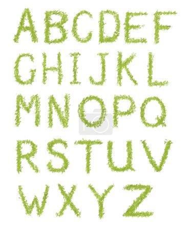 Photo pour Lettres de l'alphabet d'herbe verte isolé sur fond blanc - image libre de droit