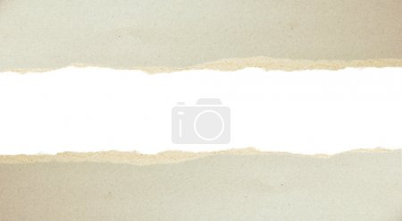 Photo for Torn paper - gray cardboard ripped apart showing underlying layer - Royalty Free Image