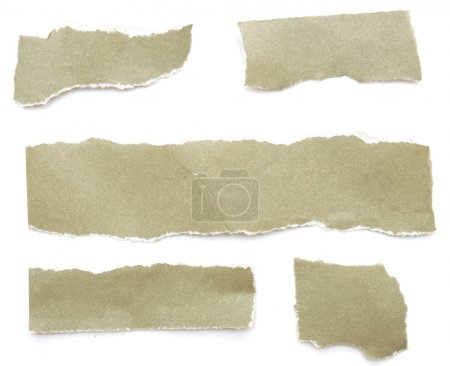Photo for Collection of grey ripped pieces of paper on white background - Royalty Free Image