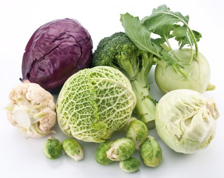 Collection of different varieties of cabbage on a white backgrou