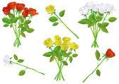 Colorful rose bouquet vector illustration set
