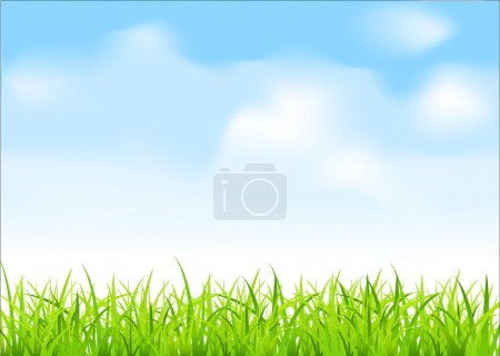 Illustration for Vector green grass and blue sky - Royalty Free Image