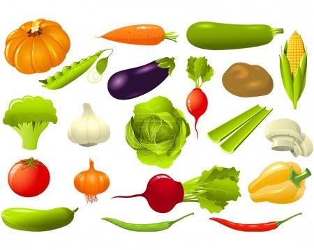 Illustration pour Ensemble de légumes - image libre de droit