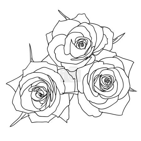 Photo pour Trois roses en style dessiné à la main - image libre de droit