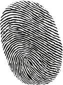 Editable vector fingerprint