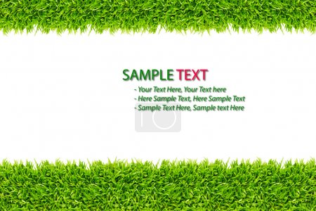 Photo for Green Grass frame isolated on white background - Royalty Free Image