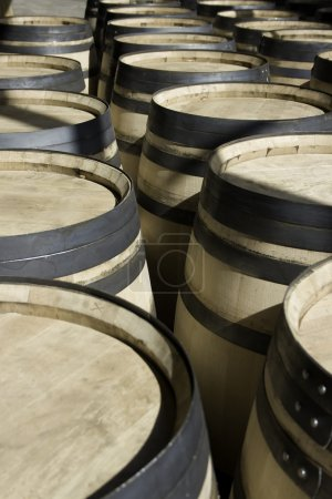 Rows of new barrels for stocking wine