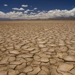 Large field of baked earth after a long drought....