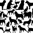 Dogs and cats silhouette collection - vector...