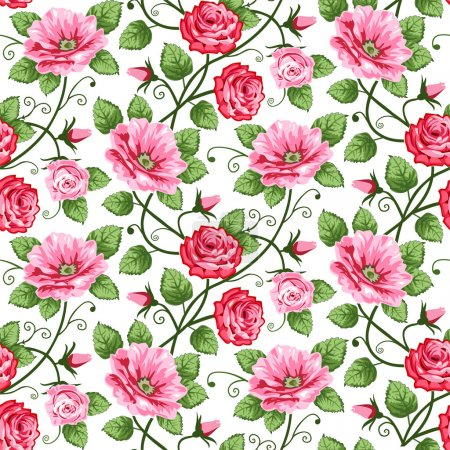 Photo for Vector roses seamless pattern on white, repeating design. - Royalty Free Image