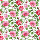 Vector roses seamless pattern on white repeating design