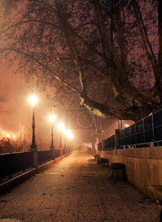 Photo for Walk with street lamps at night cityscape - Royalty Free Image