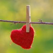 Red heart attached to a clothesline with pin...