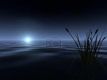 Moonrise at the Lake