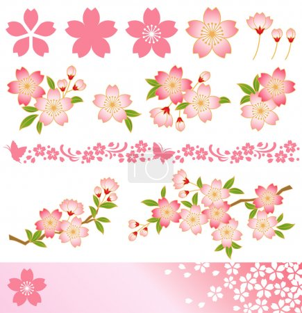 Illustration for Decoration of cherry blossoms. Icon,corner,frame,line,background. Vector illustration. - Royalty Free Image