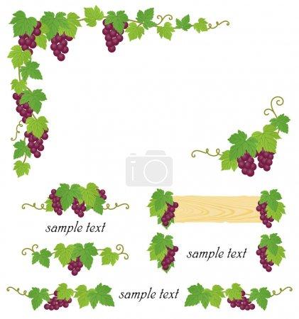 Illustration pour Ensemble de cadre de raisin. Illustration vectorielle . - image libre de droit