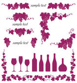 Set of grape's frame Vector illustration