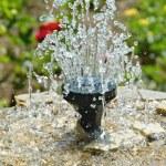 Little fountain in the garden. Shallow depth of fi...