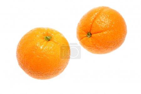 Photo pour Oranges isolées sur fond blanc - image libre de droit