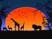 Safari - silhouettes of wild animals vector background
