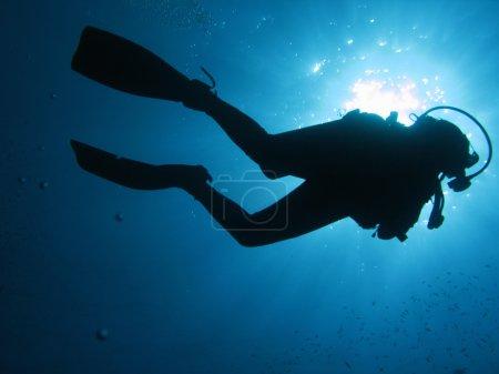 Photo pour Plongeur sous-marin à rétro-éclairage. - image libre de droit