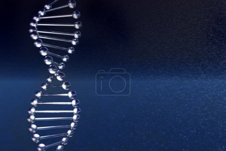 Photo for DNA molecule on a dark blue background, is executing on the 3d-editor - Royalty Free Image