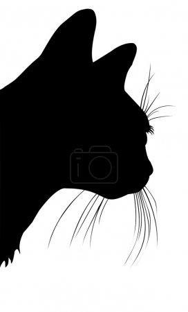 Cats head in vector
