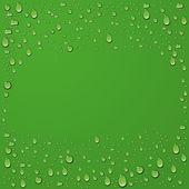 Vector water drop on green summer background