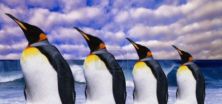 Emperor's four penguins on sea wave background