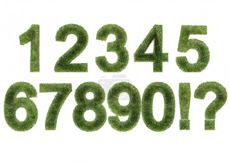 Grass Numbers (ALL)
