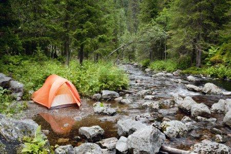 Photo pour Camping dans la forêt - image libre de droit