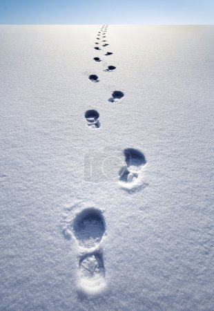 Photo for Winter path - Royalty Free Image