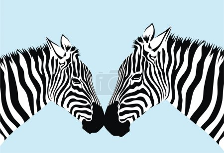 Illustration for Abstract vector illustration of zebra couple - Royalty Free Image