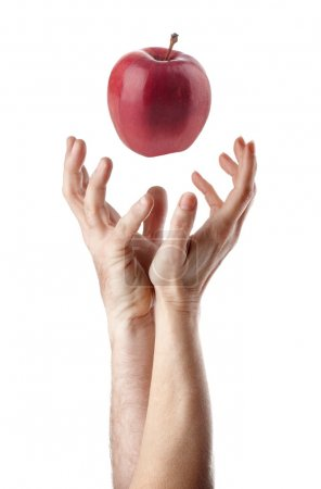 Photo for Man and woman hand trying to catch an apple - Royalty Free Image