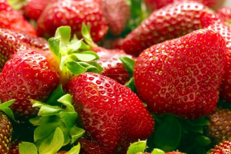 Close up of a bunch of strawberries