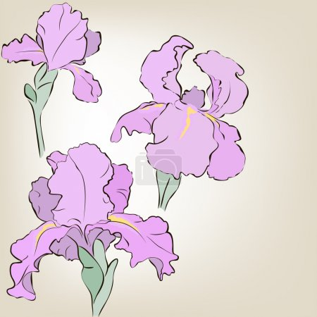 Illustration for Irises. Vector greeting card. Mother's Day - Royalty Free Image