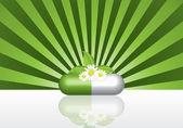 Natürliche pflanzliche Pille