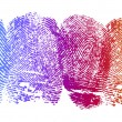High resolution graphic of fingerprints with gradi...