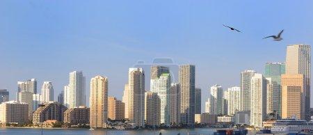 Photo pour L'horizon de Miami, Floride . - image libre de droit