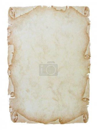 Vintage paper scroll background