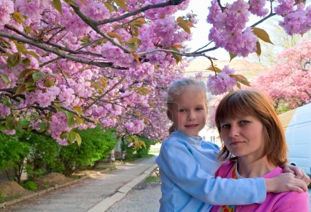 Pink japanese cherry blossom and happy family (portrait)