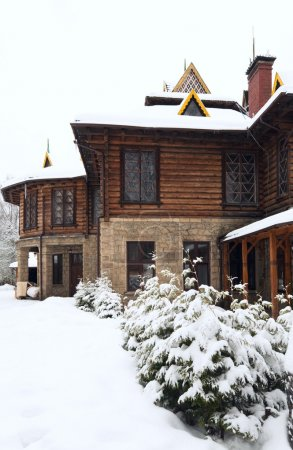 Country wooden house and winter fir trees
