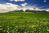montagnes des hautes tatras en Slovaquie