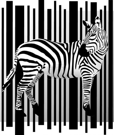Illustration for Vector zebra - Royalty Free Image