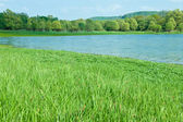Green meadows with natural mountain lake